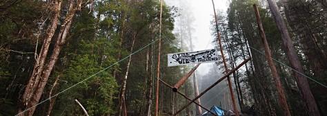 camp-florentine1