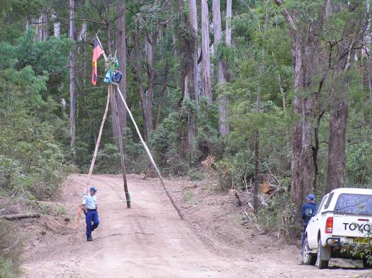 Tripod stopping logging at Mumbulla